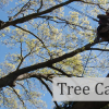 tree care banner